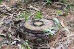 Land-mine-696x522