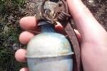 la-grenade-a-ete-conditionnee-avant-d-etre-remise-au-service-de-deminage-dans-les-prochains-jours-1462656740
