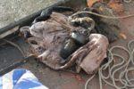 explosief_gevonden_in_de_aa_bij_veghel_foto_as_media