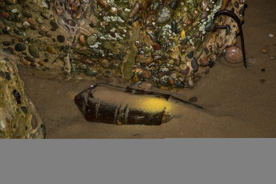 bomb-find-558x372
