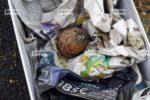la-grenade-daterait-de-la-premiere-guerre-mondiale-photo-dr-1486715640