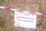 ordigno-bellico-inesploso-beta-2