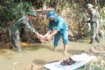 thu-hoi-luu-dan-lao-cai-1496825497212
