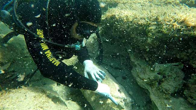 brillamento-sub-marina