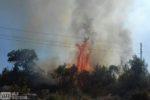požar-trebinje