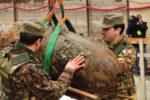 Da-gennaio-200-bombe-rese-inoffensive_articleimage
