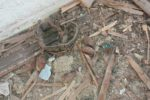 tavan-arasina-gizlenmis-patlamamis-el-bombalari-bulundu-11177080