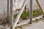 ritrovamento-ordigno-bellico-spiaggia-scossicci-porto-recanati-3-650x433