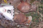 imatge-de-les-granades-5c2f45ec59320