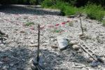 Trovato ordigno bellico su greto torrente nel Bolognese
