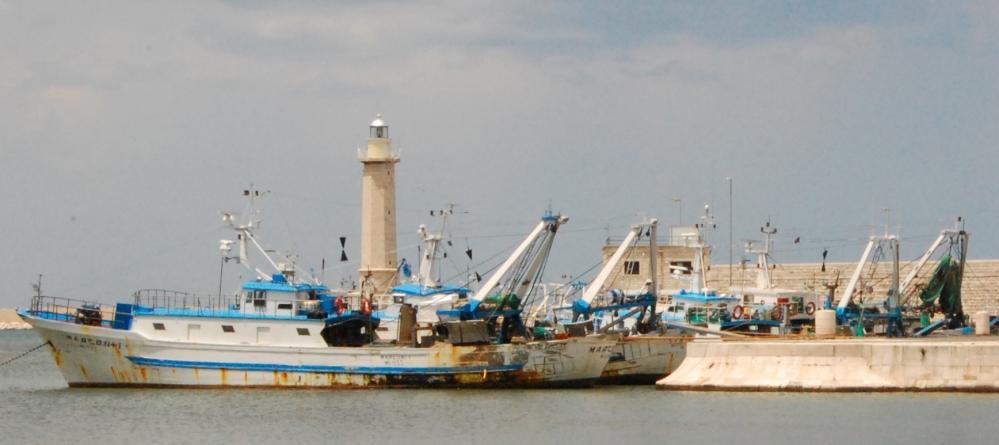 pescherecci-al-molo