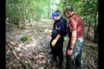 les-demineurs-sont-intervenus-pour-recuperer-deux-obus-de-75-mn-photo-er-1565300457