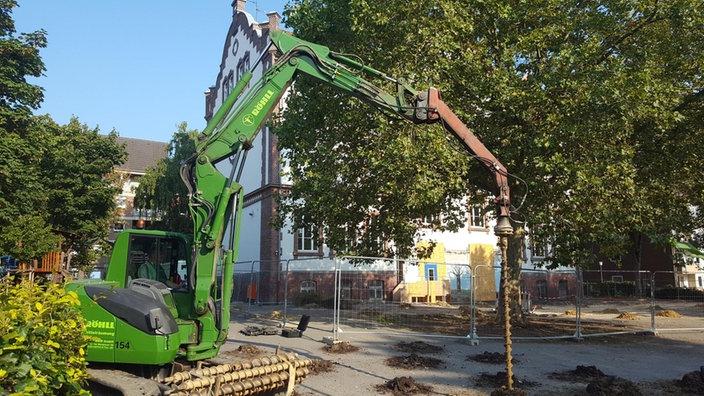 bombensuche-verhindert-schulstart-grundschule-102__v-gseapremiumxl