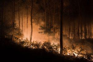 incendie-bedenac-32-chainier-adrien-4406599