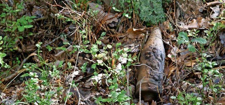 Granaten-im-Wald-bei-Baruth-gefunden_big_teaser_article