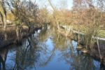l-eure-a-chartres-peche-nature-riviere_4601345