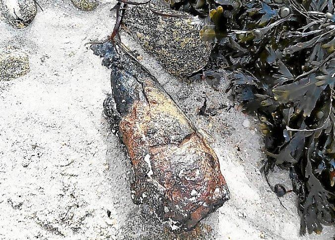 Le mortier découvert