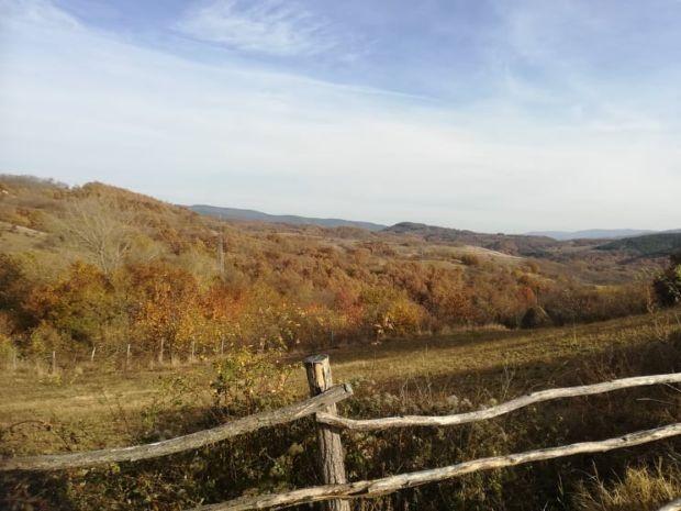 vranje-bomba_620x0