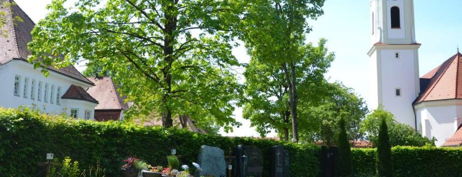 277362124-in-dieser-graeberreihe-im-neuesten-bereich-bucher-friedhofs-wurde-handgranate-entdeckt-3s79p4brNG