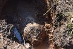 v-parfinskom-rajone-sapjory-obezvredili-fugasnuyu-aviabombu-vremjon-velikoj-otechestvennoj-vojny