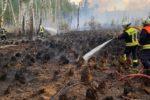 Tückisch: Obwohl keine Flammen zu sehen sind, ist der Boden heiß. Immer wieder entstehen Glutnester aus denen Feuer schlägt.