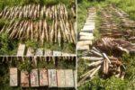 oruzje-i-municija