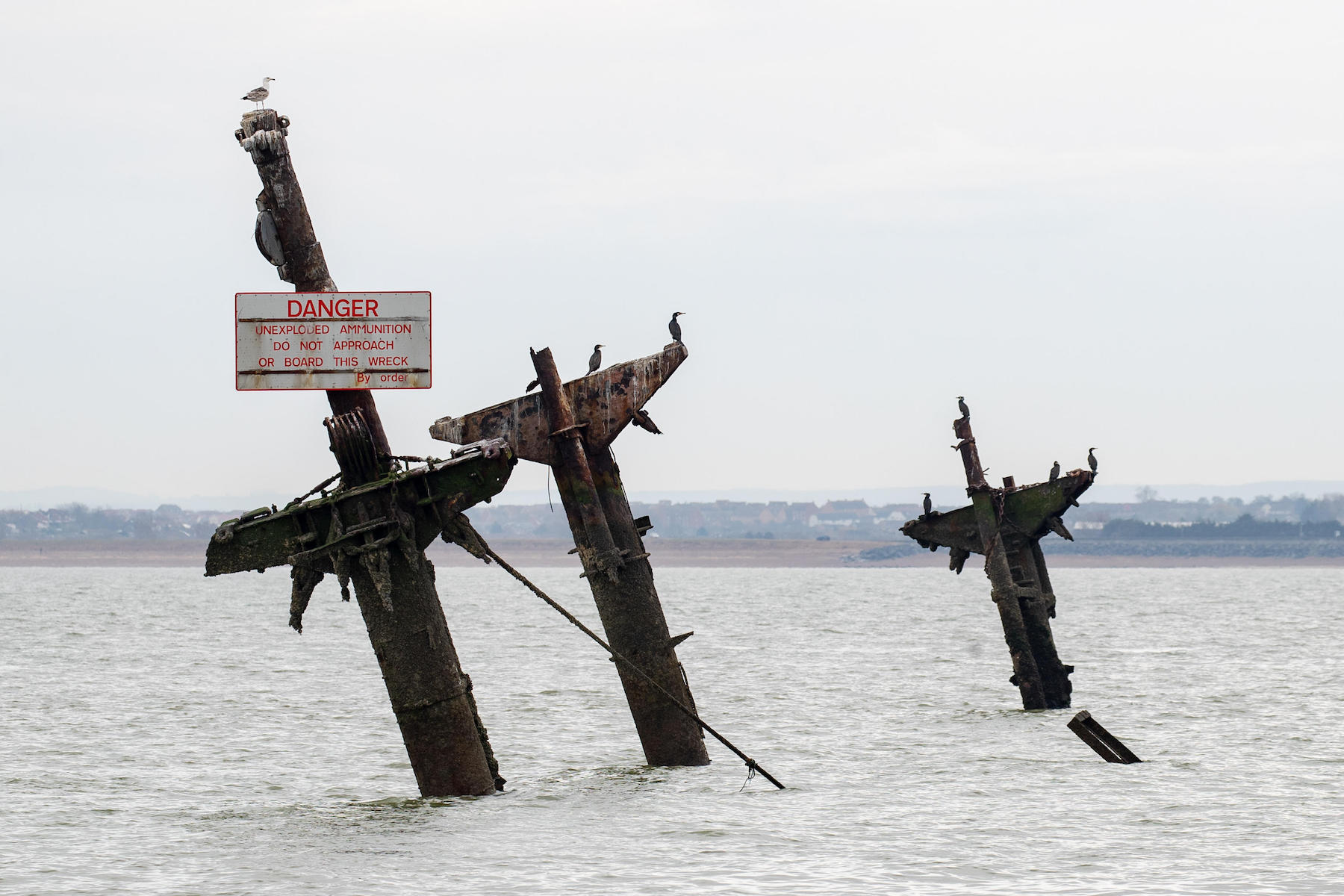 P630TT Visible masts of the wreck of SS Richard Montgomery, an American Liberty ship built during World War II,1,400 tonnes of explosives remain on board