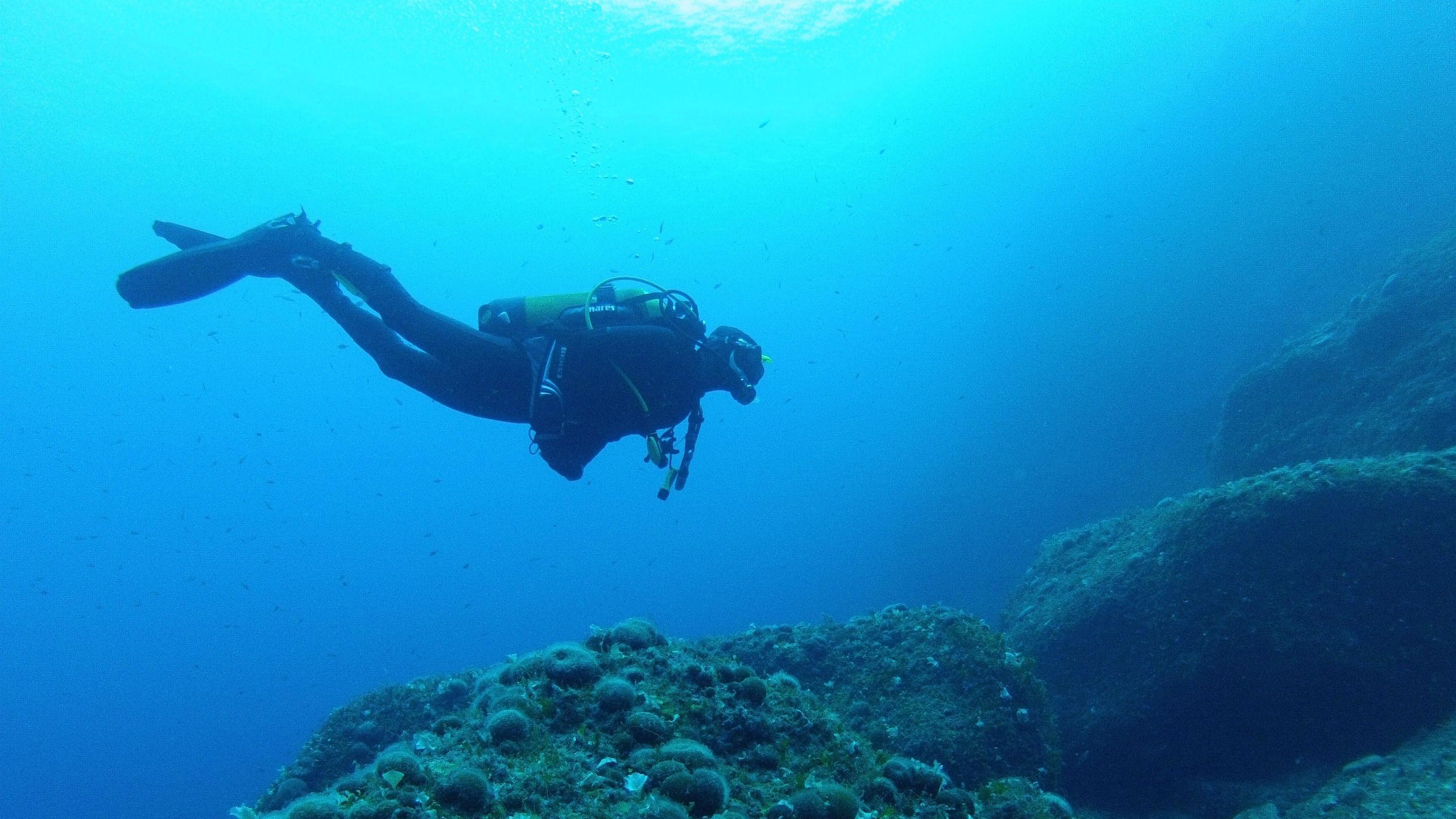 diver-sub