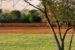 bonifica-parco-green-23-4-21-770x470